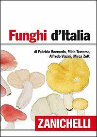funghi d_italia.jpg