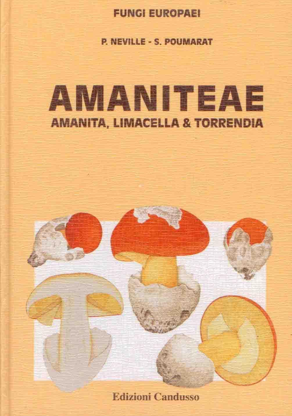 Fungi europaei