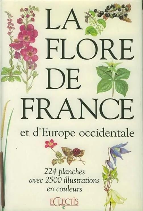 flore de france.jpg