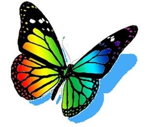 papillon_arc_en_ciel.jpg