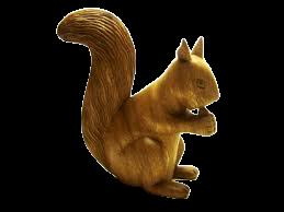 Écureuil.png