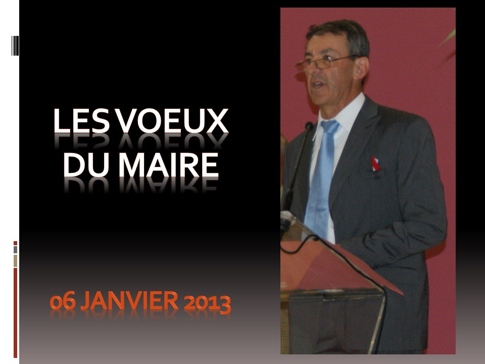 Voeux du Maire 2013.jpg