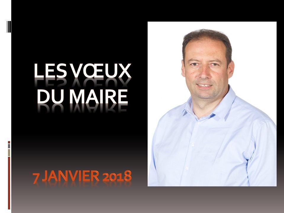 Voeux du Maire 2018.jpg