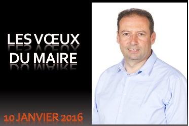 Voeux du Maire 2016.jpg