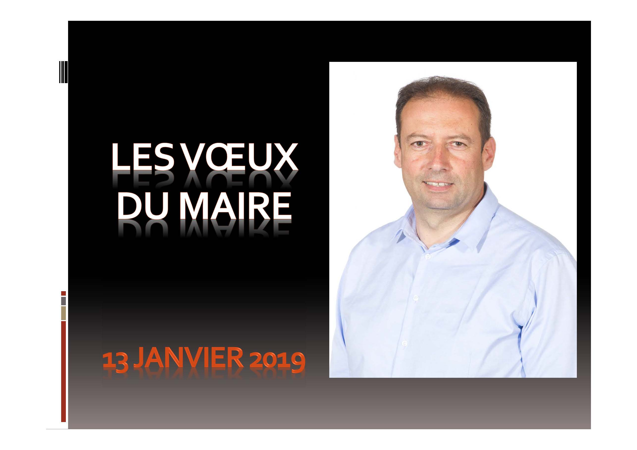 Voeux du Maire 2019.jpg
