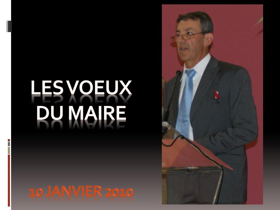 Voeux du Maire 2010.jpg