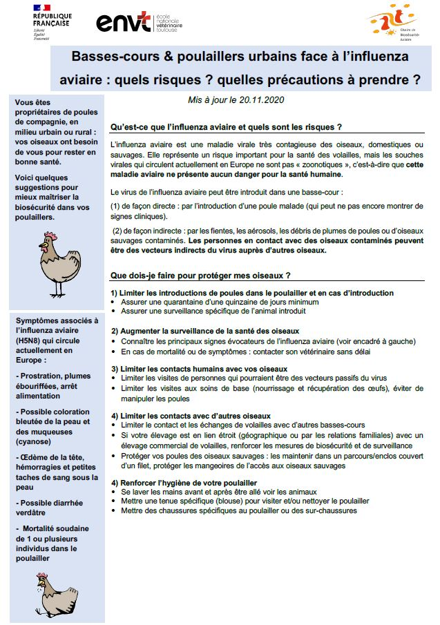 grippe_fiche biosécurité.JPG