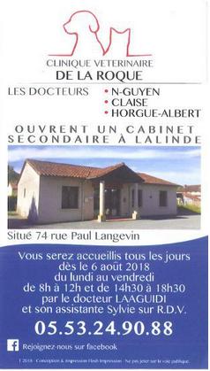 Clinique vétérinaire.PNG