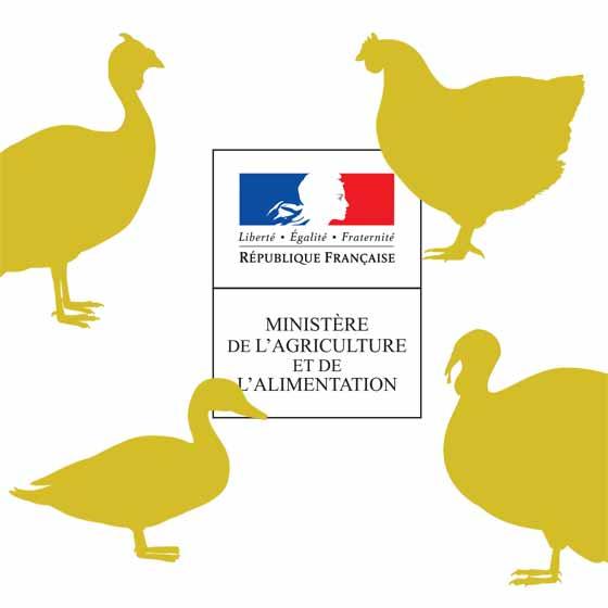 aviaire.jpg