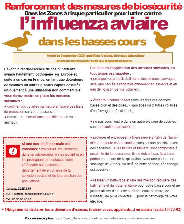 grippe_flyer_mesures.JPG