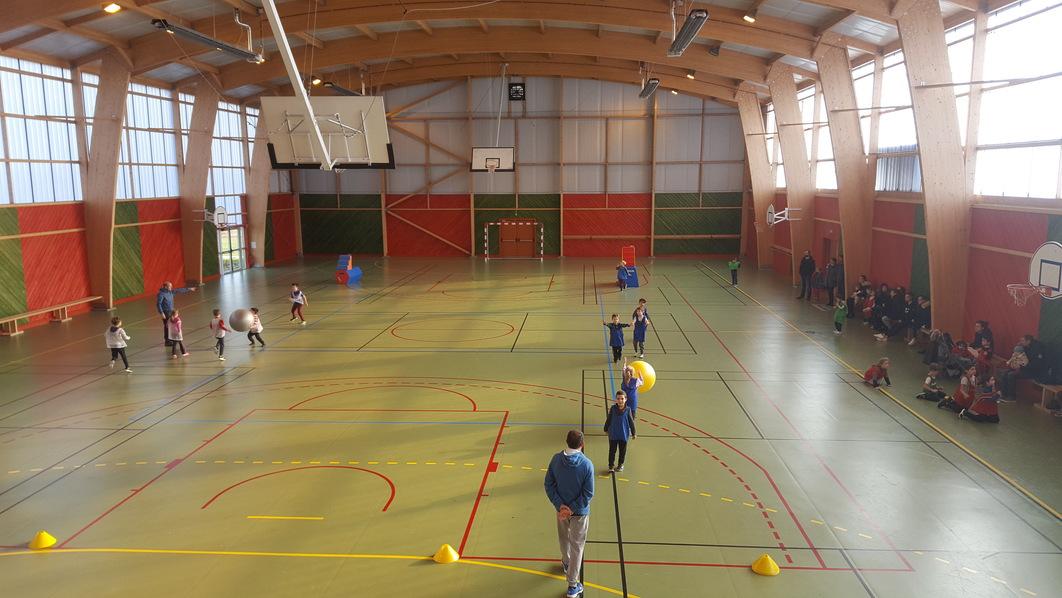 ecole-sports-gymnase1-ConvertImage.jpg