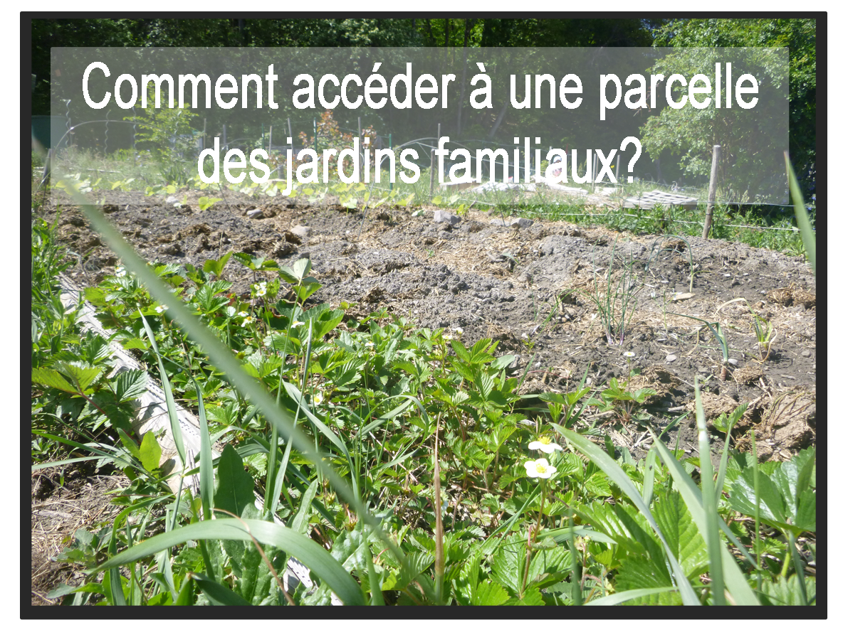 jardin famillial bouton.png