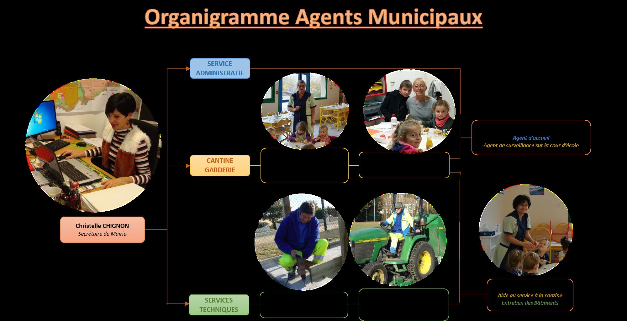 organigramme services et techniciens.png