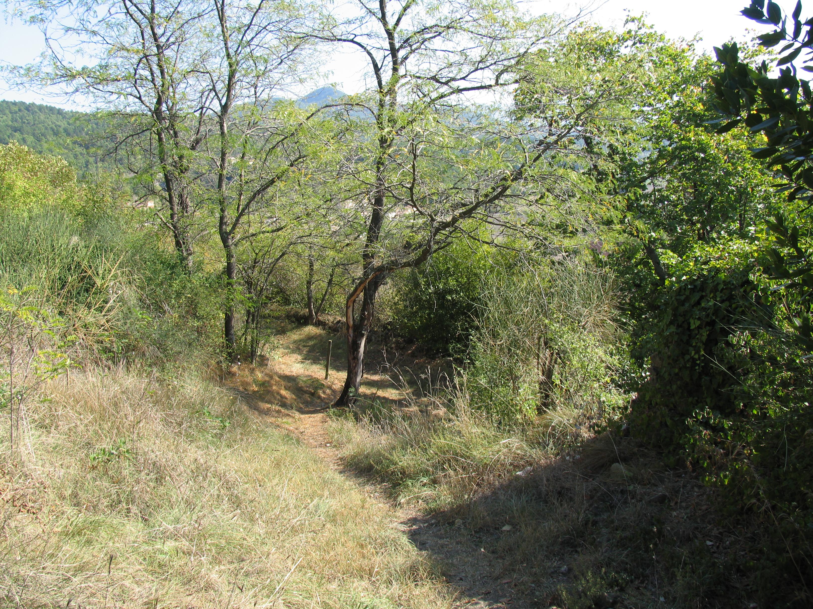 Chastelas - Sentier