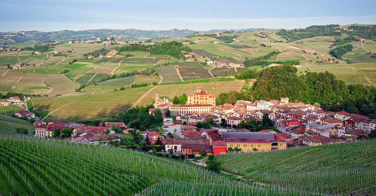 barolo-101-wine-guide-social.jpg