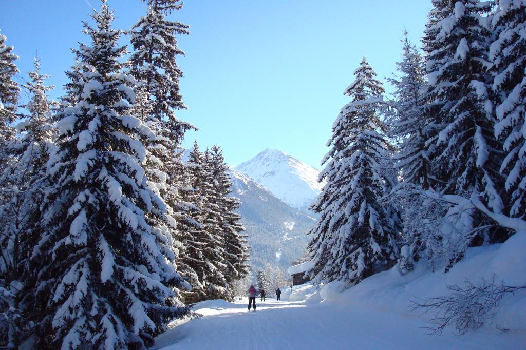 piste ski sapin.JPG