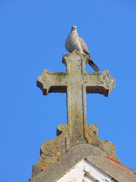 Croix de l'église