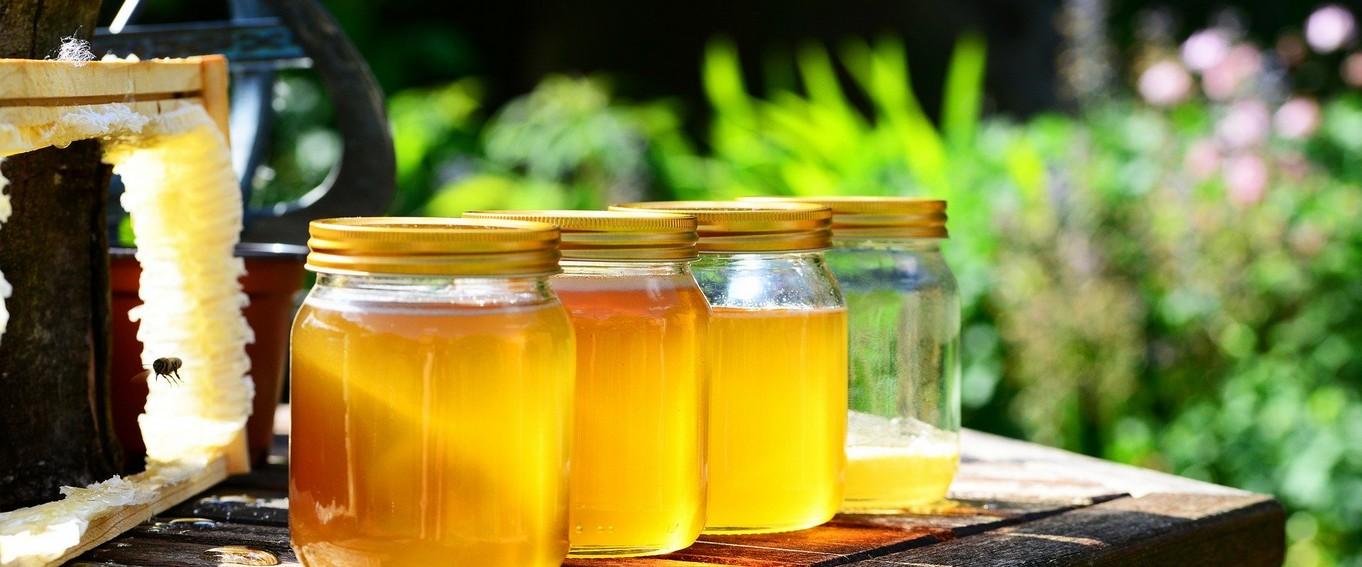 miel de lesches.jpg