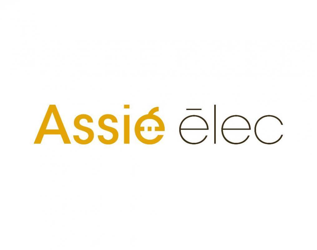 Logo assie elec.jpg