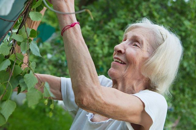jardinage-senior.jpg