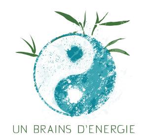 Un brains d_energie.jpg