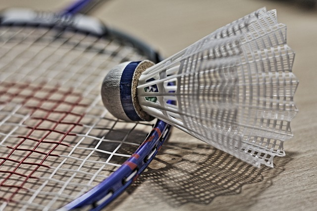 Badminton Club de Brains (BCB)
