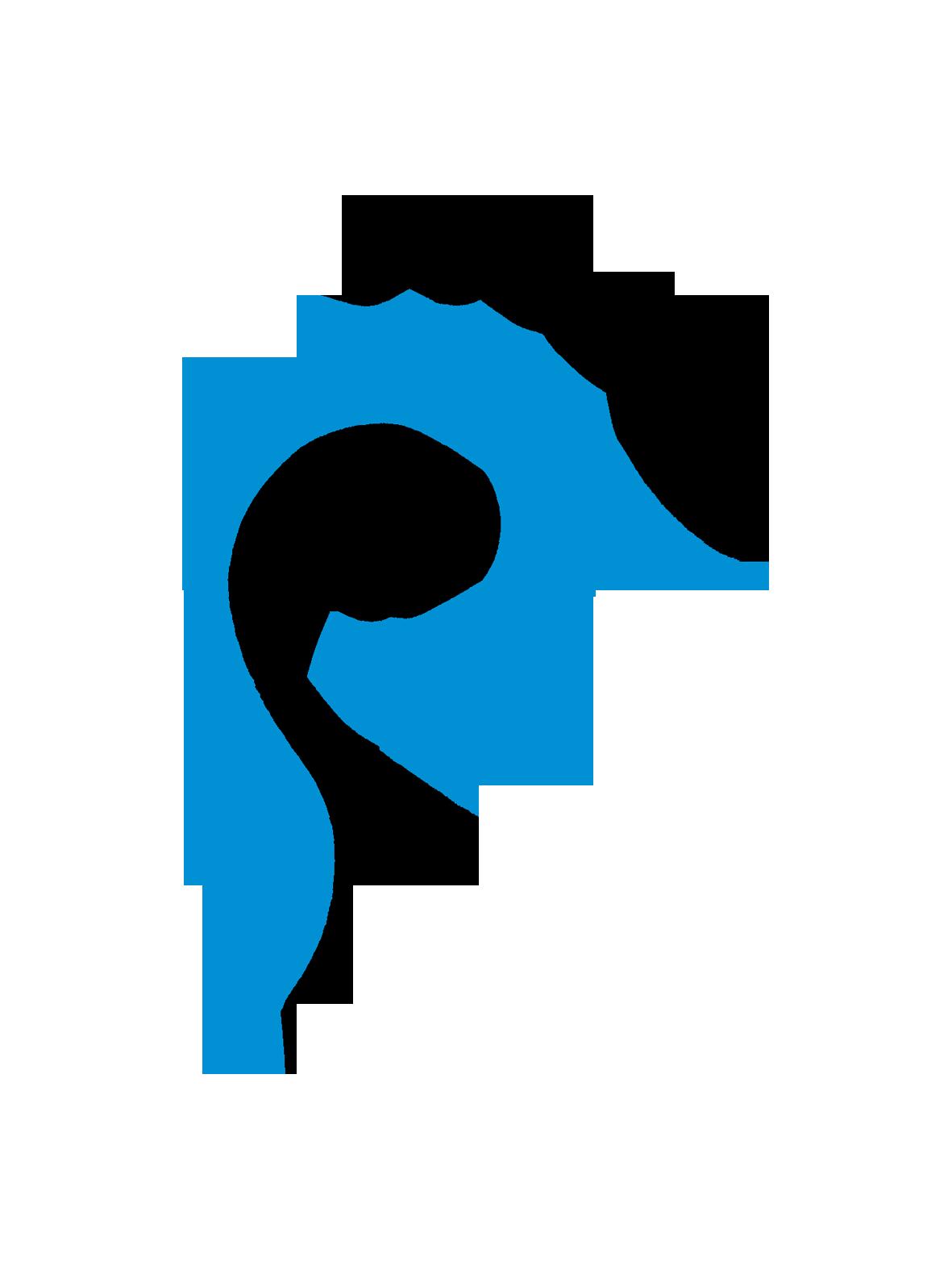Logo_Reflexologie.png