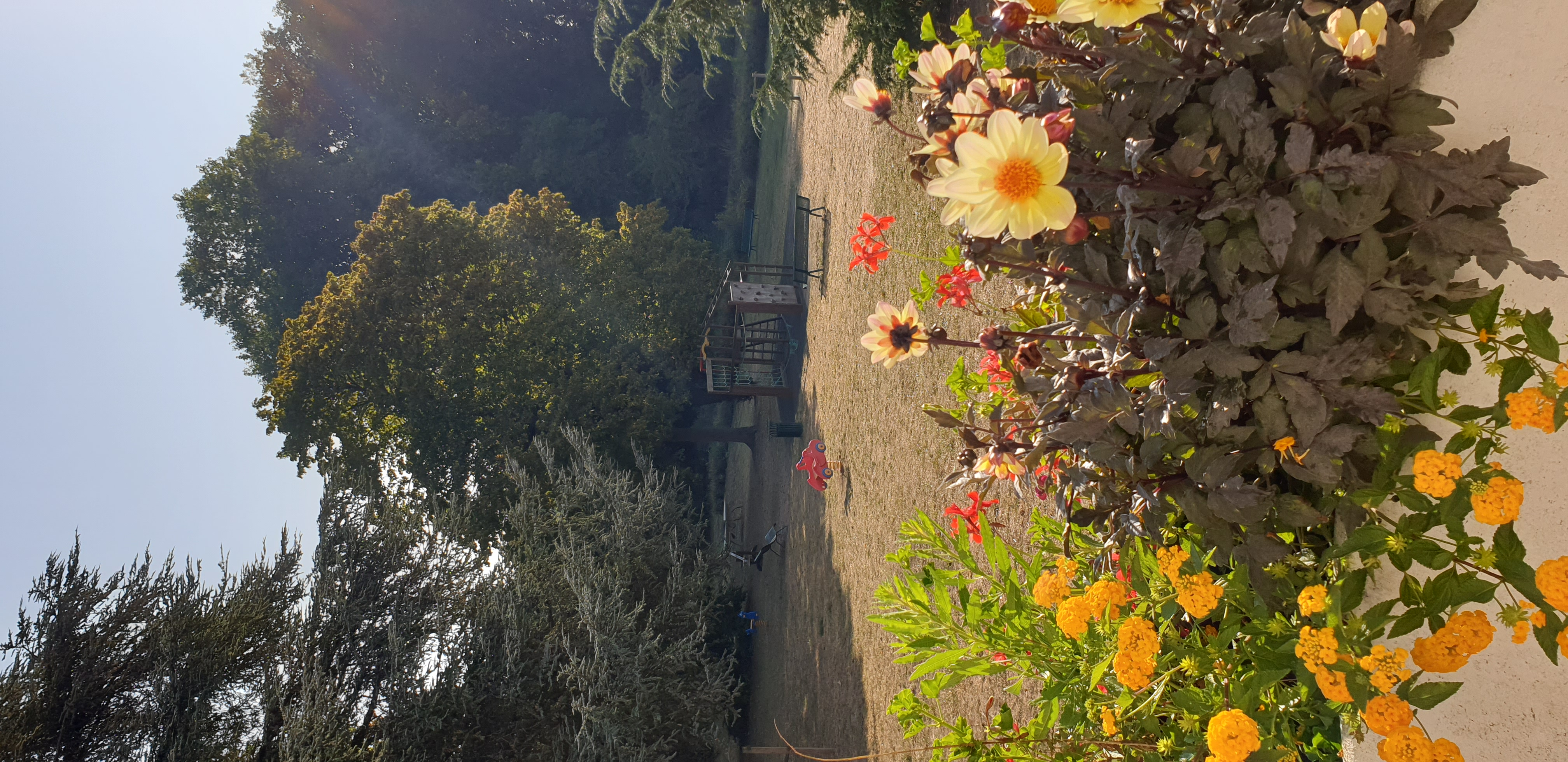 09 - fleurissement 2020 _20_.jpg