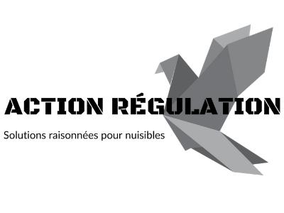 ACTION REGULATION.png