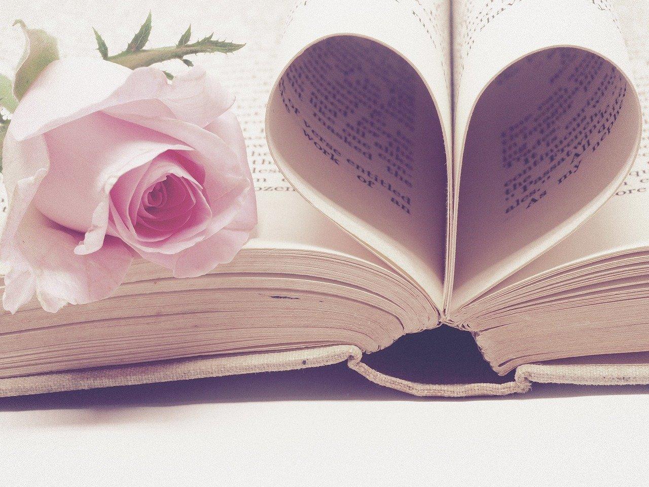 Livre coeur et rose.jpg