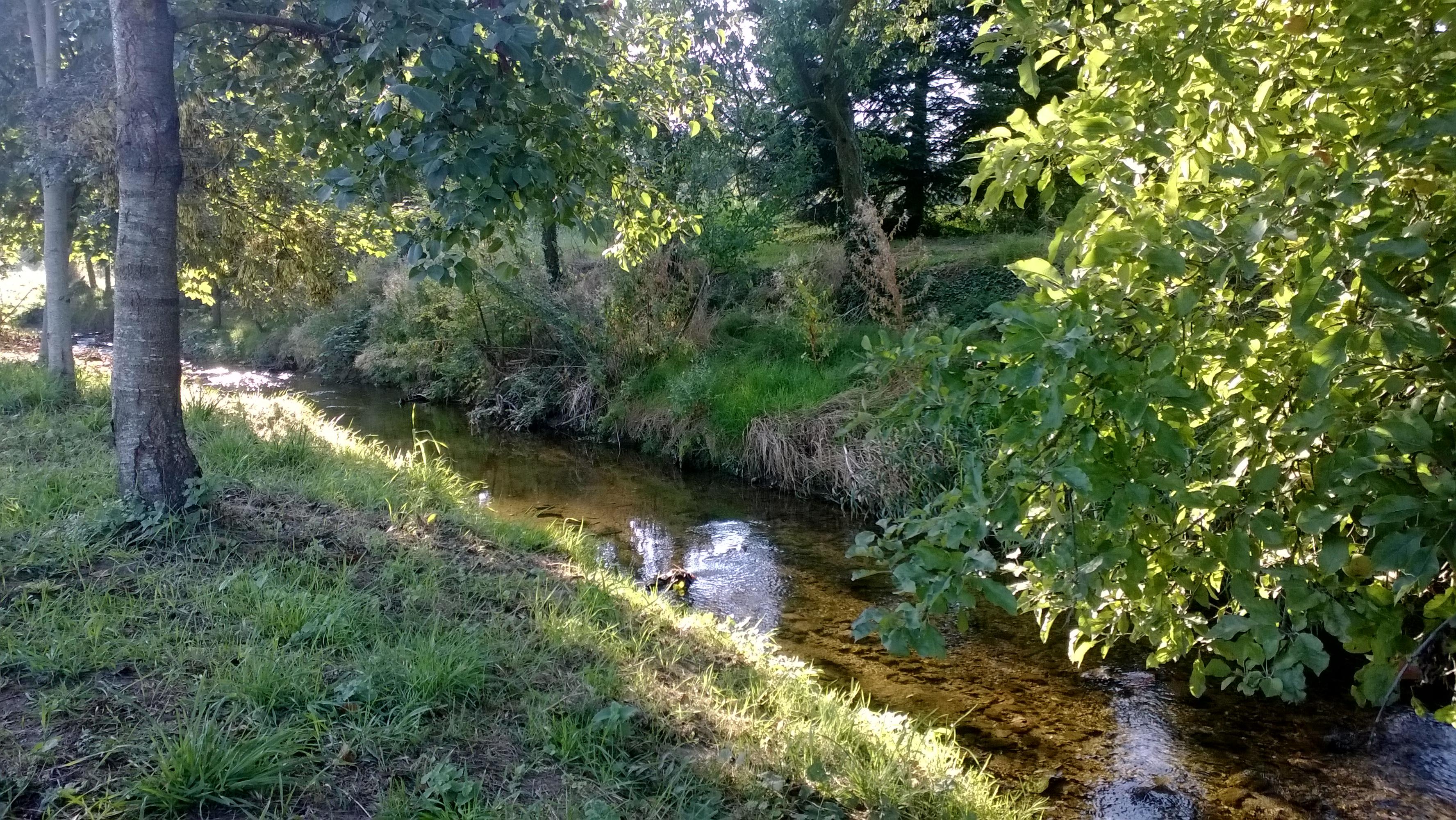 La rivière Anzieux