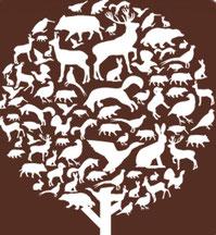 Logo-ACCA.jpg