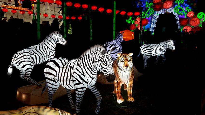 festival-lanternes-24.jpg