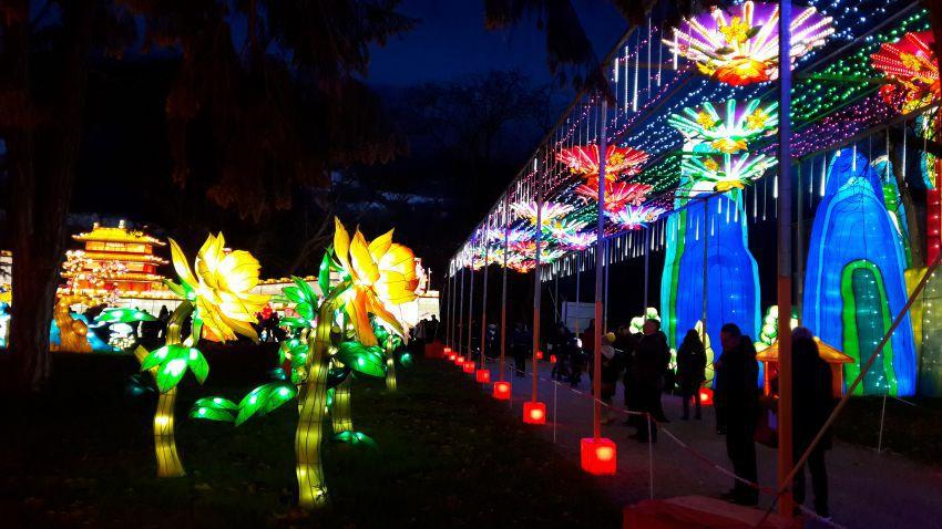 festival-lanternes-11.jpg