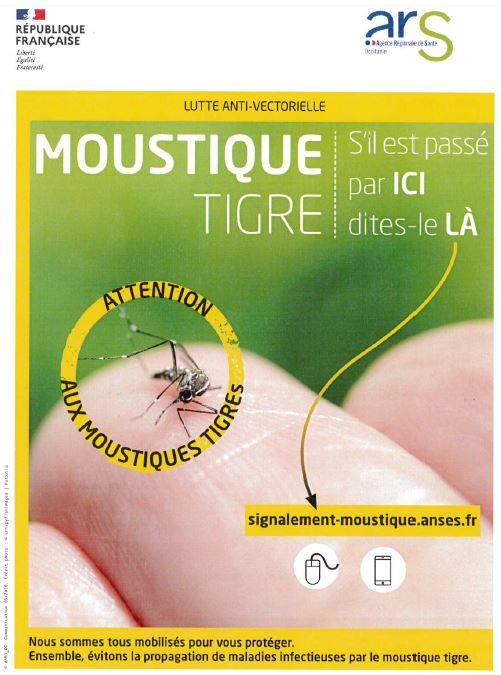 Moustique tigre - Affiche 2.JPG