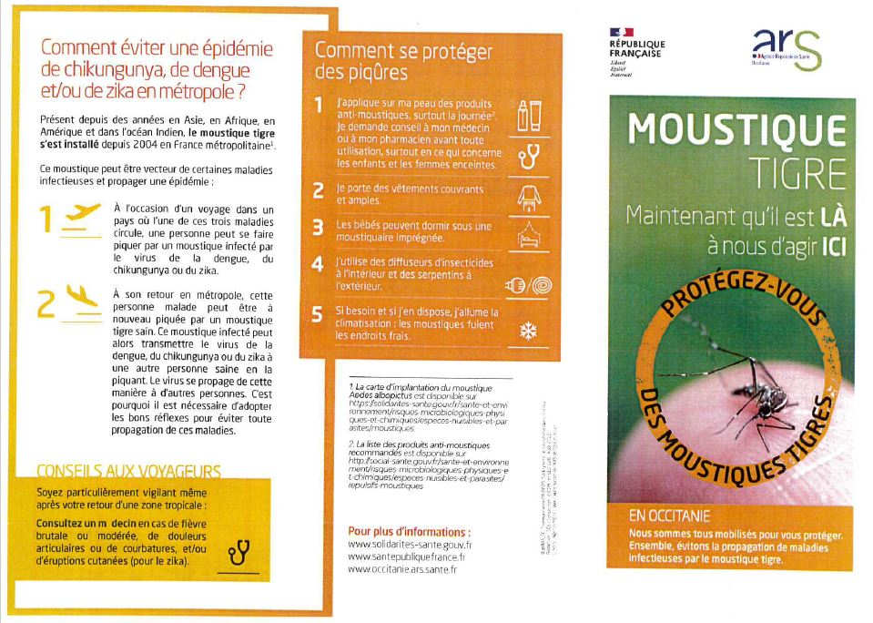 Moustique tigre - Flyer 1.JPG