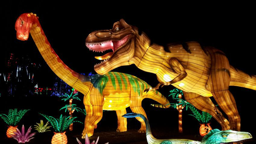 festival-lanternes-23.jpg