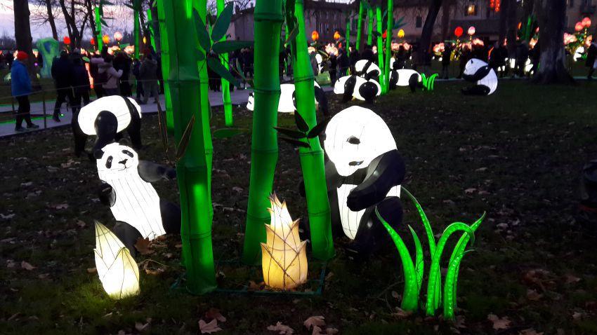 festival-lanternes-05.jpg