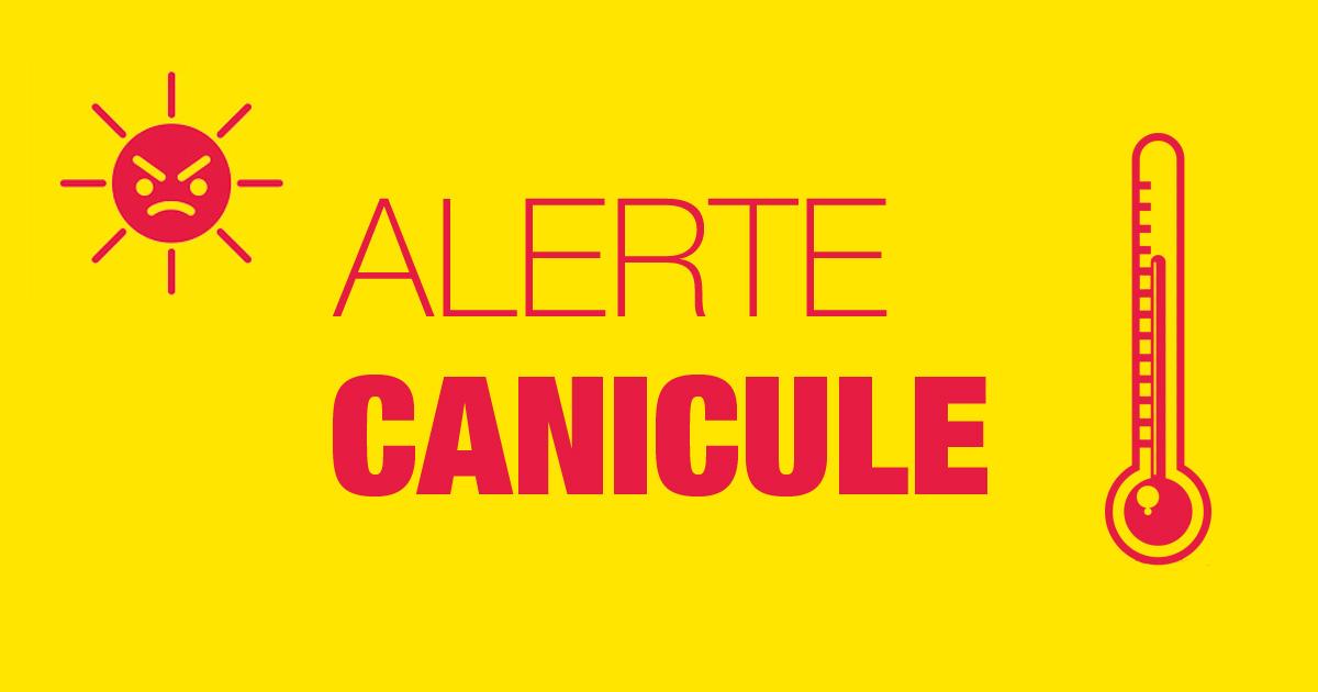 canicule.jpg