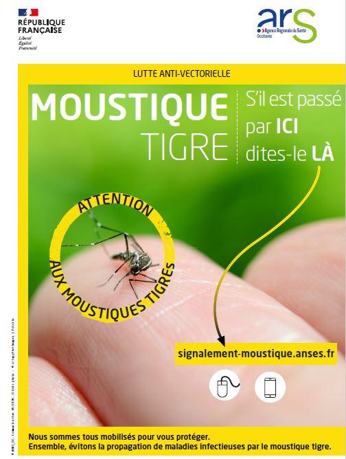 Moustiques.JPG
