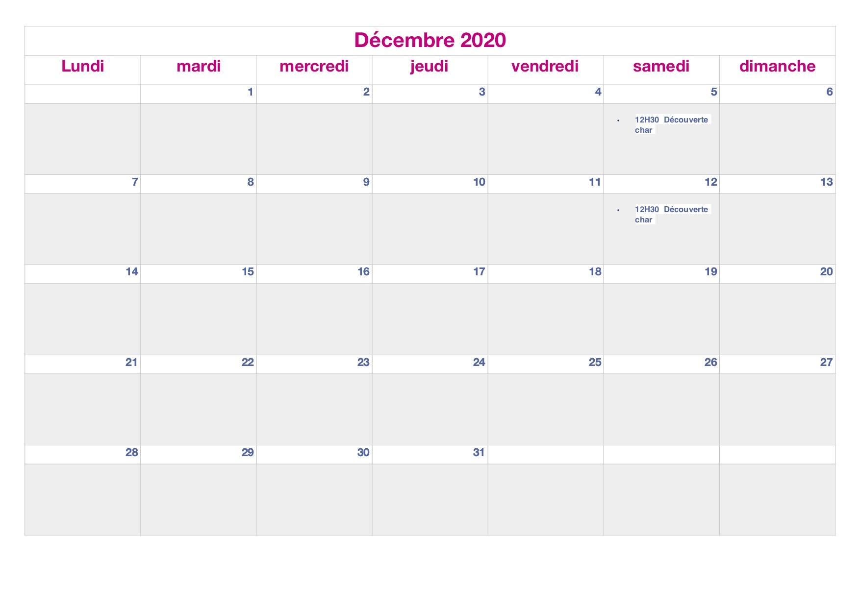 planing Décembre 2020.jpg