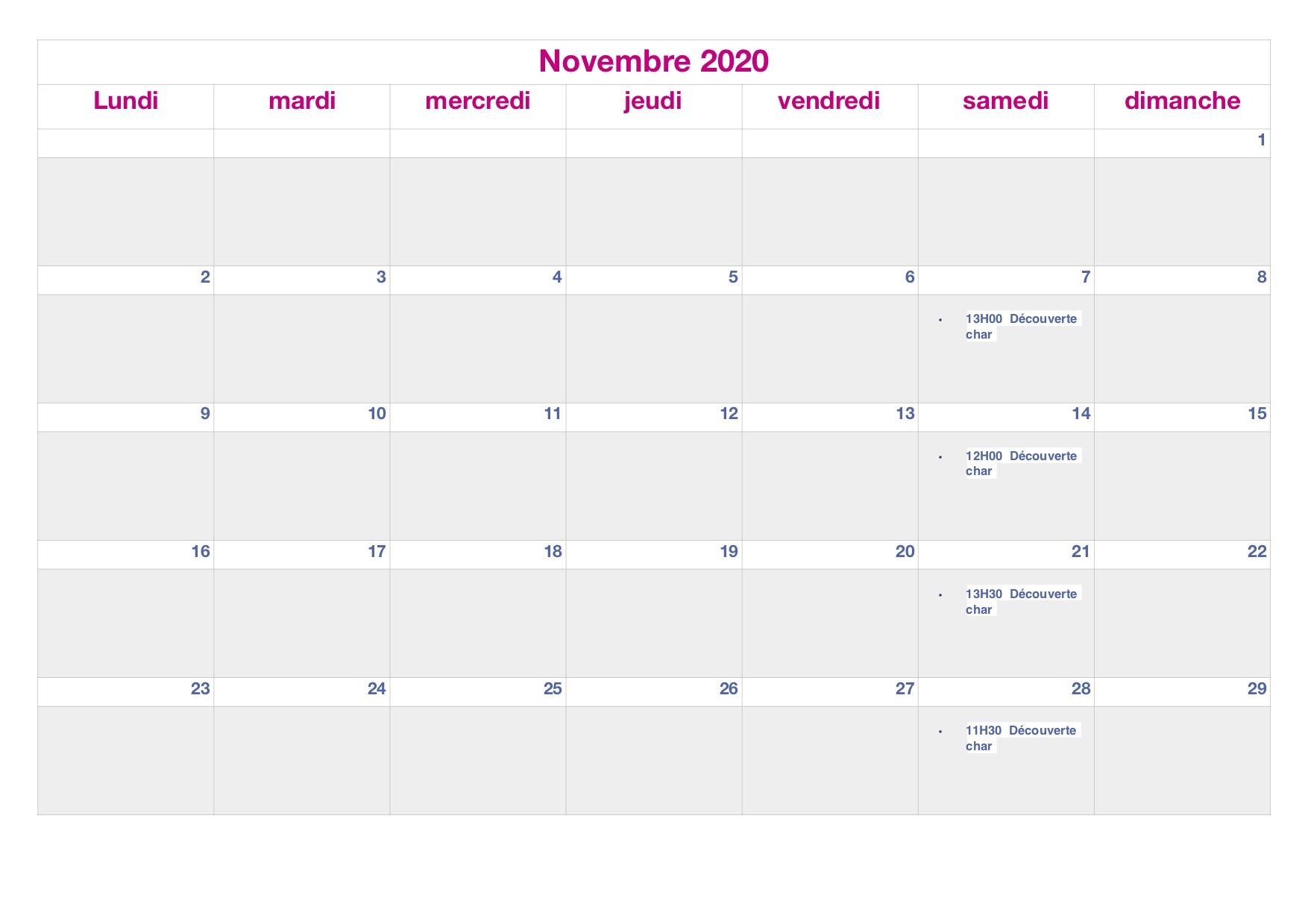 planing Novembre 2020.jpg