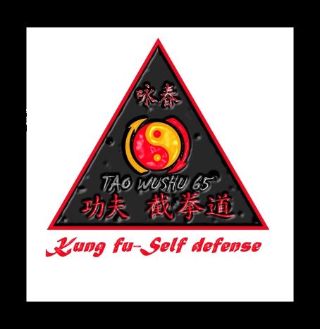 Logo final kung fu 2.png