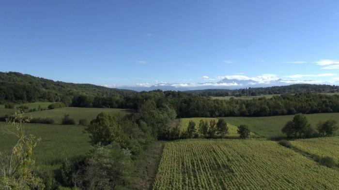 plaine-de-lousse 3.jpg