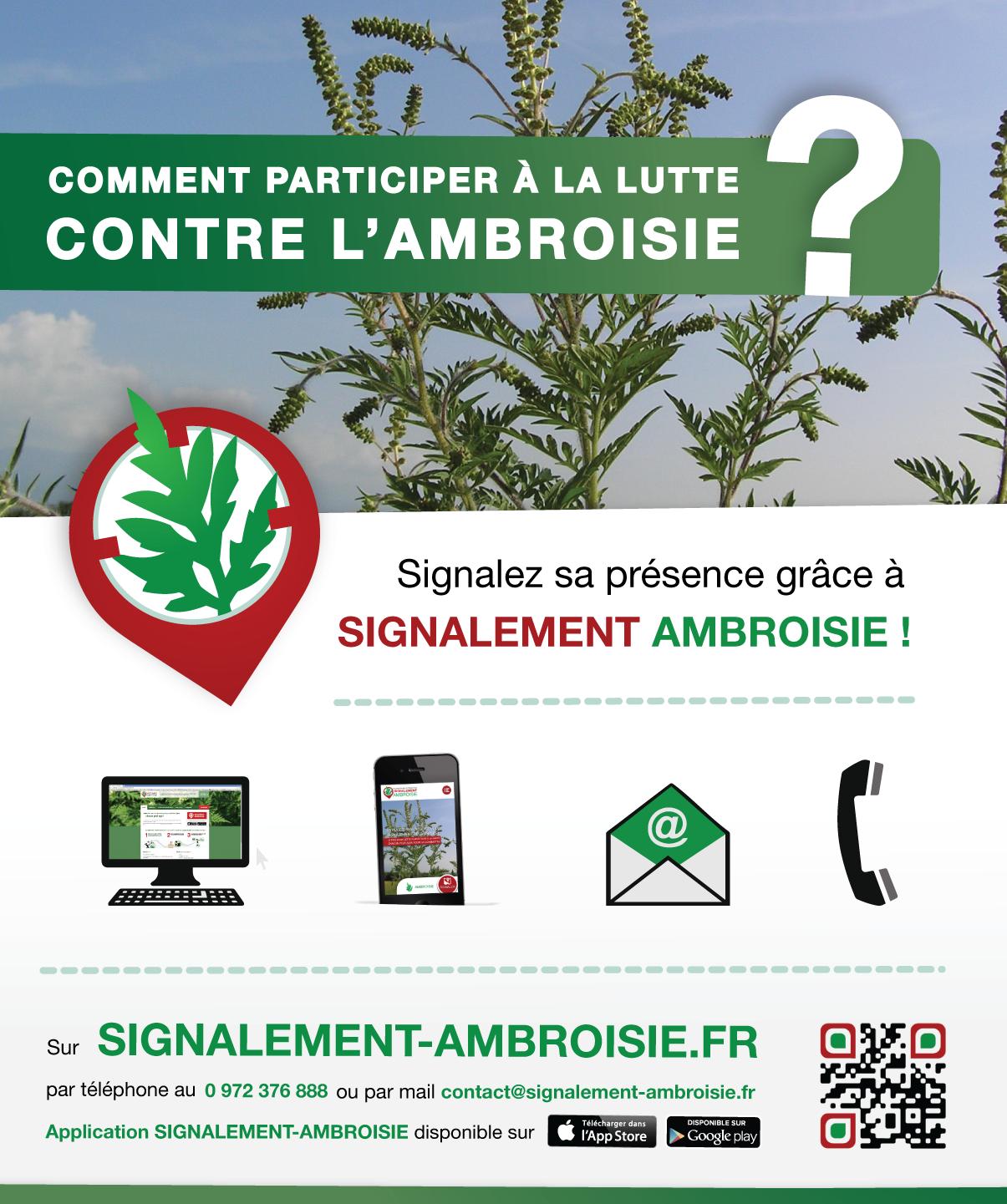 Ambroisie-Encart_presse.png