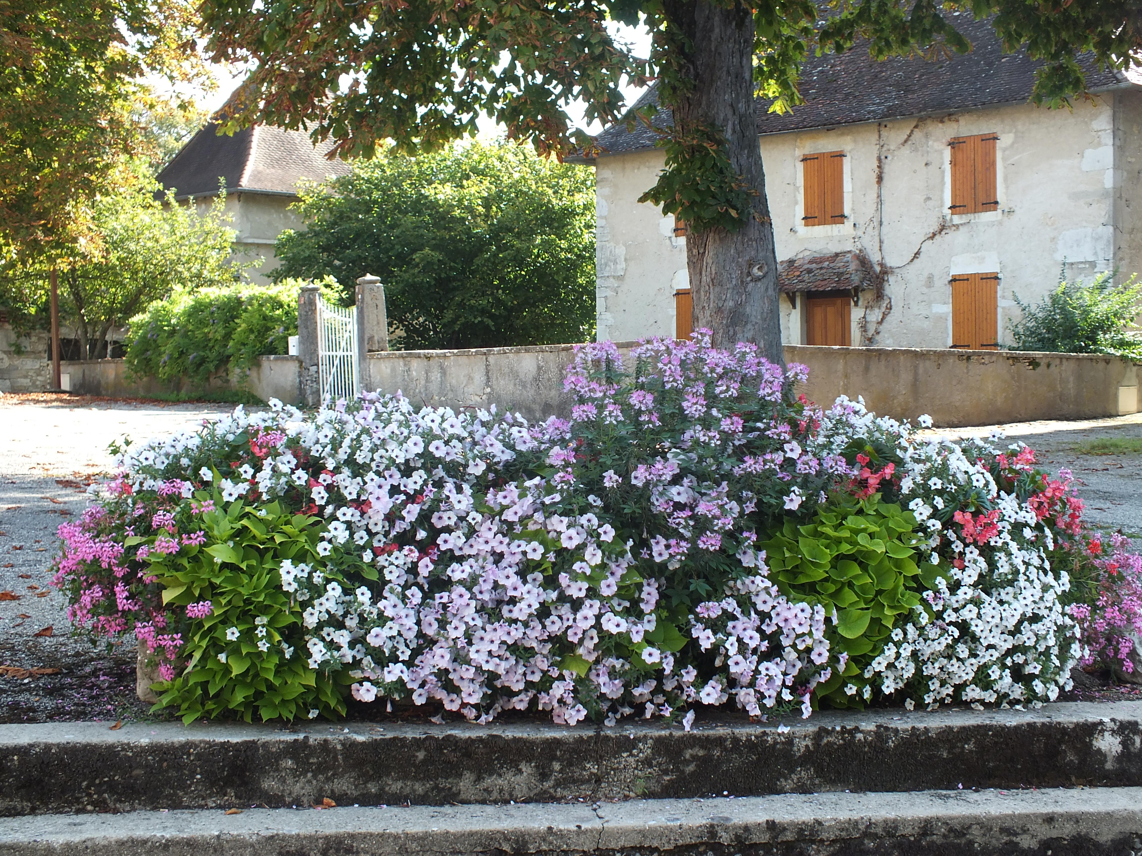 fleurissement commune12®JFD.JPG