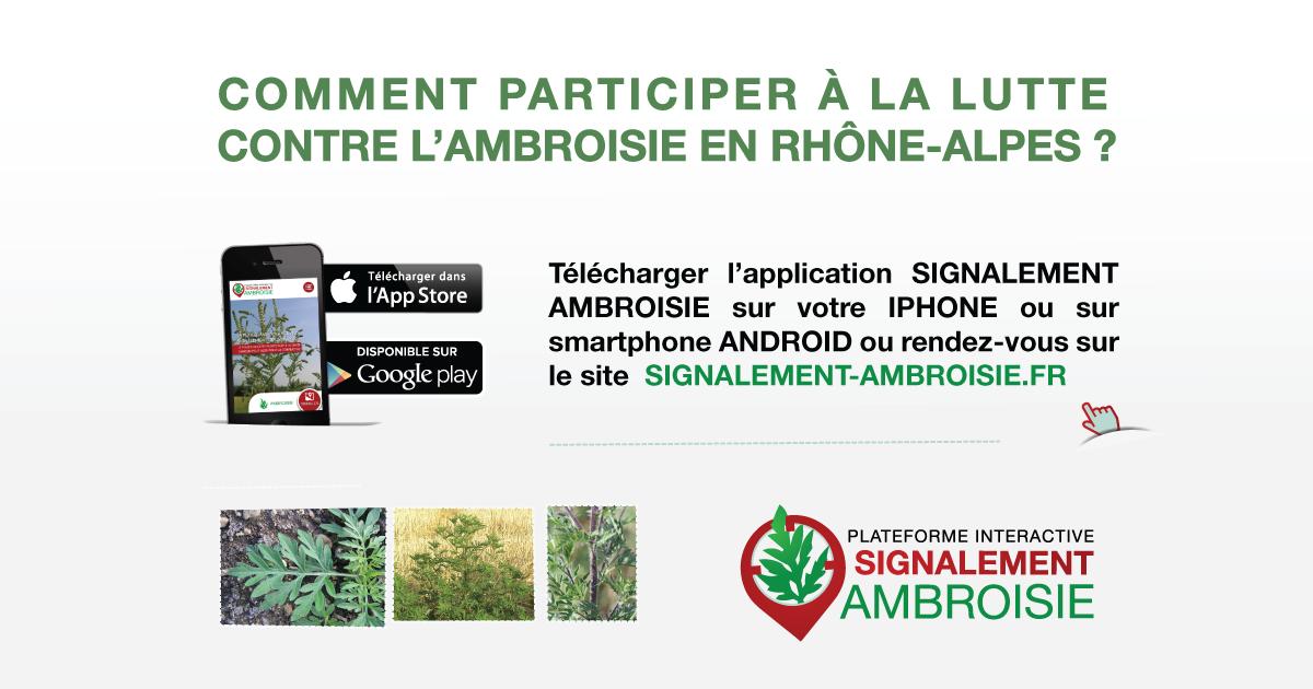 ambroisie facebook.png