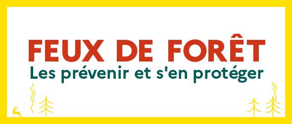 FEUX DE FORET.jpg