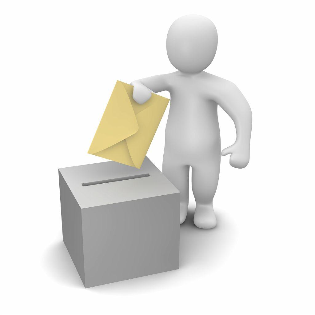 Bonhomme-vote.jpg
