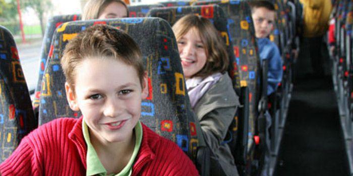 Transport Bus 2.jpg